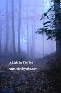 A light in the fog