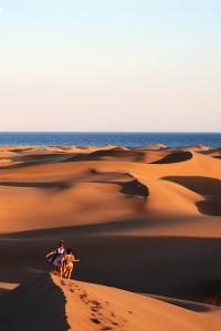 Sand Dunes Along Ocean